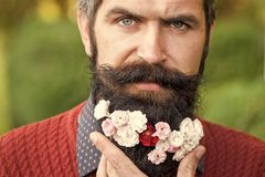 Hombre con las flores en barba Fotos de archivo libres de regalías