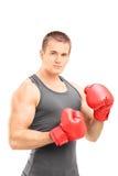 Hombre con los guantes de boxeo que presentan en el fondo blanco Fotografía de archivo