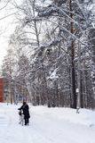 Hombre con una bicicleta en el camino Rusia, Siberia del invierno Fotografía de archivo