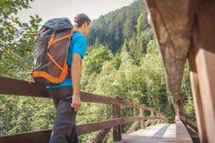 Hombre con una mochila que camina en un puente en el bosque foto de archivo