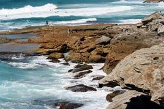 Hombre de Australia en la playa Fotos de archivo libres de regalías