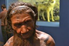 Hombre de las cavernas del Neanderthal Foto de archivo
