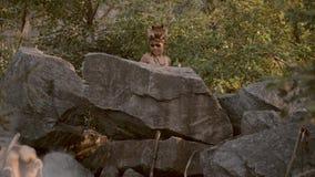 Hombre de las cavernas, muchacho de hombres que caza al aire libre Retrato antiguo del guerrero almacen de video