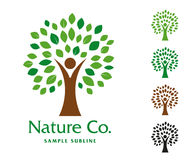 Hombre de Nature Company y plantilla del logotipo del árbol Foto de archivo