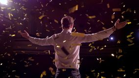 Hombre de negocios acertado con los brazos para arriba que celebra su victoria Celebración de éxito Opinión de ángulo bajo de jóv metrajes