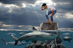 Hombre de negocios afroamericano Surrounded por los tiburones imagenes de archivo