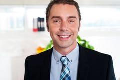 Hombre de negocios alegre hermoso fotografía de archivo libre de regalías