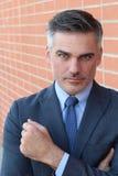 Hombre de negocios apuesto acertado y potente fotografía de archivo