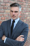 Hombre de negocios apuesto acertado y potente fotografía de archivo libre de regalías