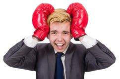 Hombre de negocios divertido del boxeador Fotos de archivo