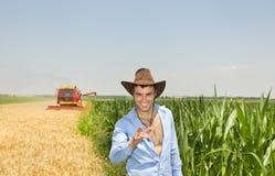 Hombre de negocios en campo durante cosecha Imagen de archivo libre de regalías