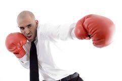 Hombre de negocios en guantes de boxeo de la acción que desgastan Fotografía de archivo