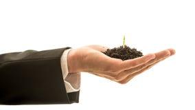 Hombre de negocios Hand Holding Soil con el crecimiento de la planta Fotografía de archivo