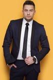 Hombre de negocios hermoso en un traje de negocios Imagenes de archivo