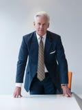 Hombre de negocios mayor confiado y hermoso Fotografía de archivo libre de regalías