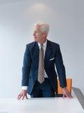 Hombre de negocios mayor confiado y hermoso Foto de archivo libre de regalías