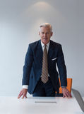 Hombre de negocios mayor confiado y hermoso Imagen de archivo libre de regalías
