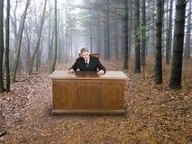 Hombre de negocios, oficina de negocios en bosque, verde que va Imágenes de archivo libres de regalías
