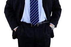 Hombre de negocios profesionalmente vestido Imágenes de archivo libres de regalías