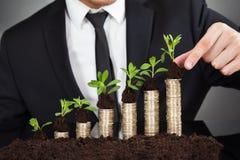 Hombre de negocios que apila árboles jóvenes en las monedas que representan crecimiento Imagen de archivo libre de regalías