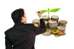 Hombre de negocios que coloca una pared de la pila de monedas con el brote creciente aislado en el fondo blanco fotografía de archivo
