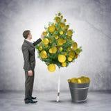 Hombre de negocios que recoge monedas de árbol Imagen de archivo libre de regalías
