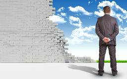 Hombre de negocios y pared de ladrillo arruinada con la naturaleza imágenes de archivo libres de regalías