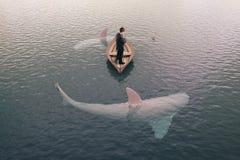 Hombre de negocios y tiburones Imagenes de archivo
