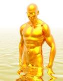 Hombre de oro Foto de archivo