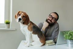 Hombre de Smilling en vidrios con el beagle en la tabla Foto de archivo