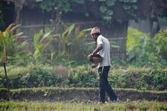 Hombre de Tharu que derrama las semillas en campos Fotografía de archivo libre de regalías