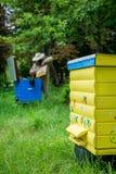 Hombre del Apiarist que trabaja en naturaleza en verano Imagen de archivo libre de regalías