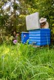 Hombre del Apiarist que trabaja en naturaleza en verano Fotografía de archivo libre de regalías