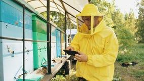 Hombre del apicultor con la tableta que comprueba colmenas de madera antes de cosechar la miel en colmenar Fotos de archivo