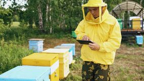 Hombre del apicultor con la tableta que comprueba colmenas de madera antes de cosechar la miel en colmenar Foto de archivo