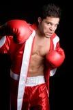 Hombre del boxeo imagenes de archivo