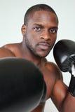Hombre del boxeo imágenes de archivo libres de regalías