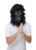 Hombre del gorila Foto de archivo