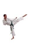 Hombre del karate Imagen de archivo libre de regalías