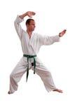 Hombre del karate Foto de archivo