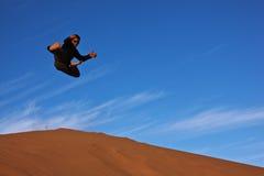 Hombre del karate del vuelo Imagen de archivo libre de regalías