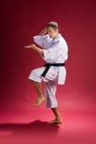 Hombre del karate en la acción   Fotos de archivo