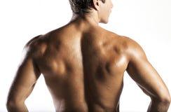 Hombre del músculo Imágenes de archivo libres de regalías