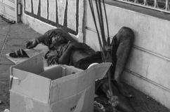 Hombre del mendigo que duerme en las calles de Santo Domingo, República Dominicana fotografía de archivo