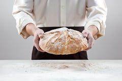 Hombre del panadero que sostiene la barra de pan orgánica rústica en manos Fotos de archivo libres de regalías