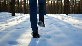 Hombre del pie de la nieve que camina metrajes