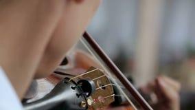 Hombre del violinista del Latino en un fondo blanco metrajes