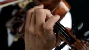 Hombre del violinista del Latino en un fondo negro almacen de video