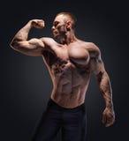 Hombre descamisado muscular en estudio sobre oscuridad Fotografía de archivo libre de regalías