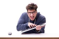 Hombre divertido del empollón que trabaja en el ordenador aislado en blanco fotos de archivo